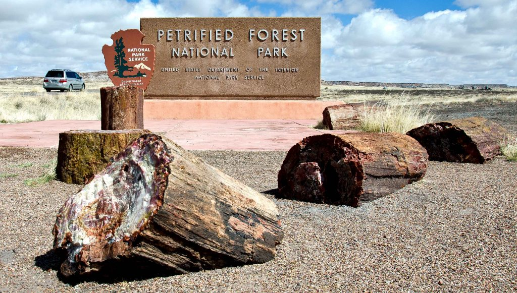 petrified forest flagstaff arizona national park thigns to do